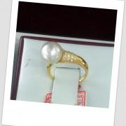 MissJoaquim.com - WA: +6287888894689