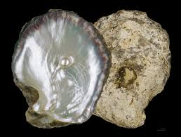 Batu Mutiara