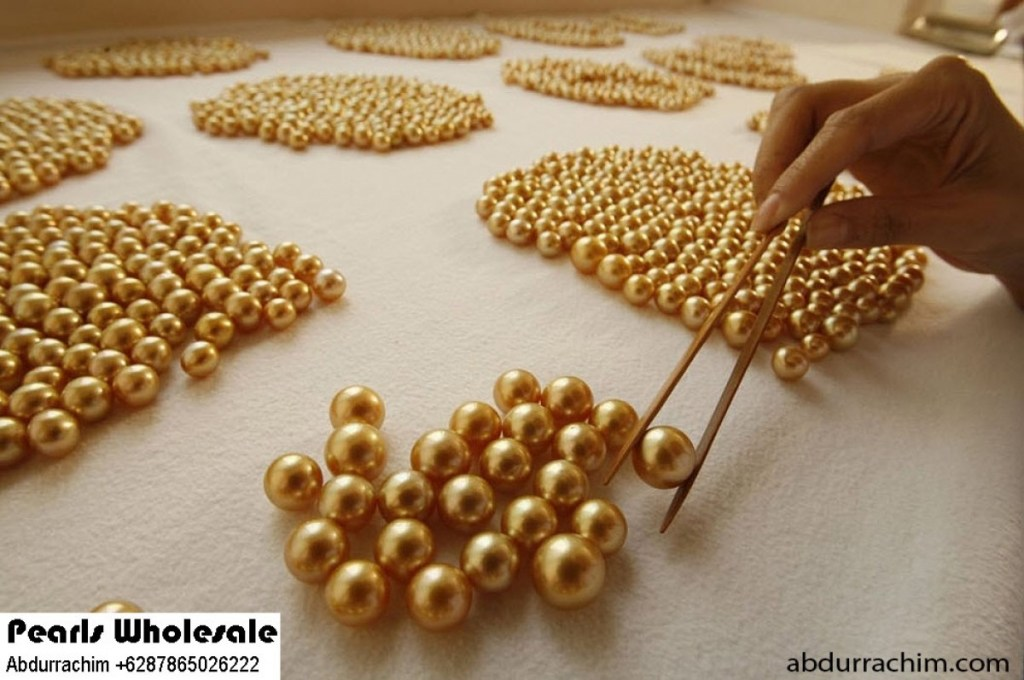 price-pearl-wholesale-abdurrachim-6287865026222 (1)