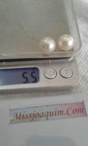 High Quality Loose South Sea Pearl (BZW-2010)