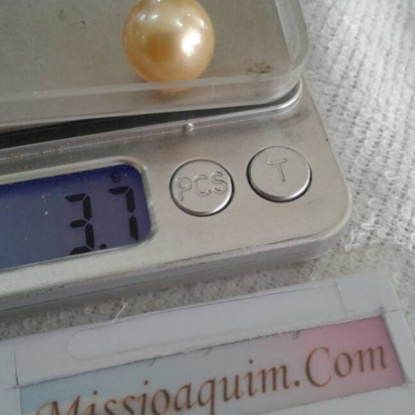 High Quality Loose South Sea Pearl (BZG-1028)