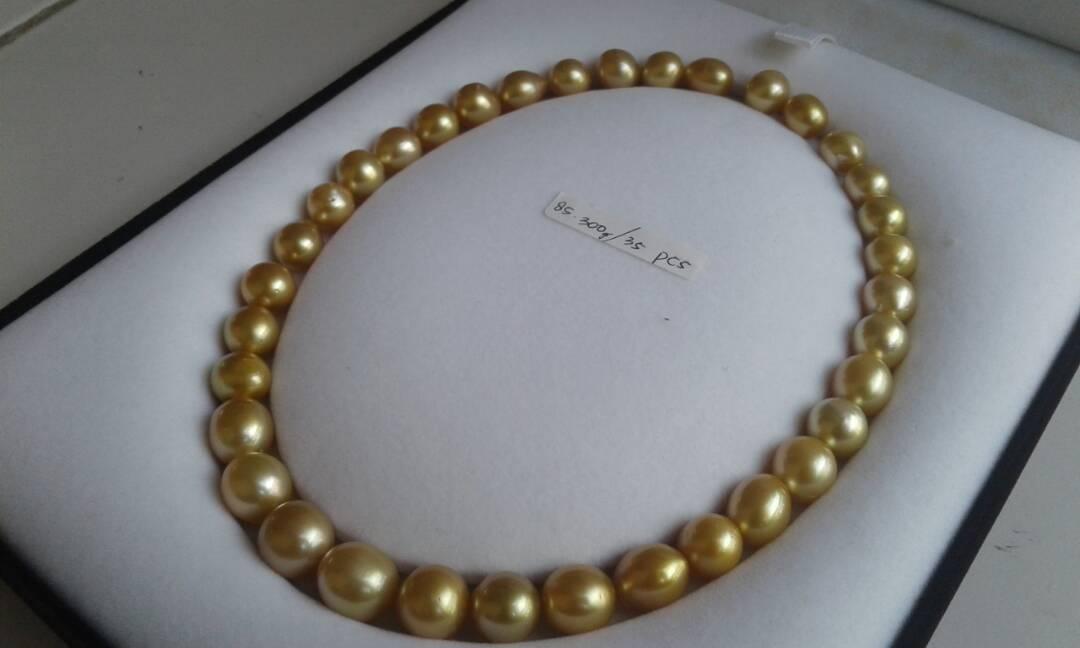 south sea pearl price 35p-0002