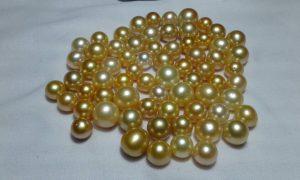 South Sea Pearl (LOT-GTR111)