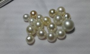 South Sea Pearl (LOT-ATW115)