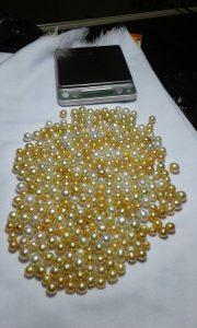 South Sea Pearl (LOT-AT01)
