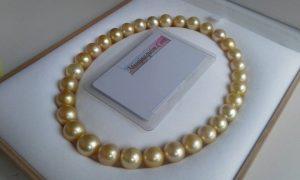 mutiara lombok pearl