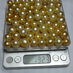 South Sea Pearl (LOT-ATG192)